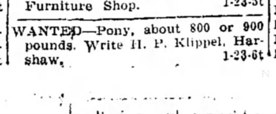 H.P Klippel. pony - Furniture Shop. 1 ' 23 ^ WANTED—Pony, about 800...