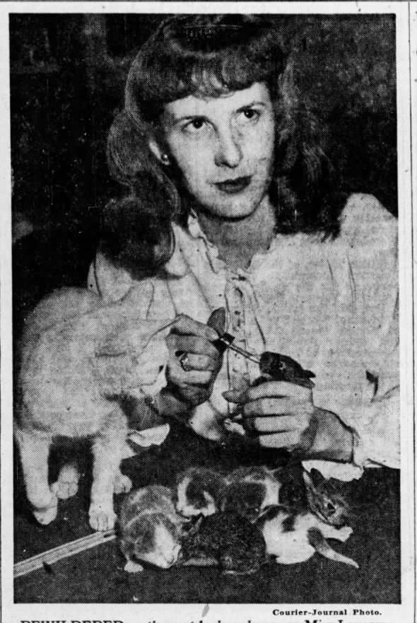 1946: Cat adopts 3 baby rabbits
