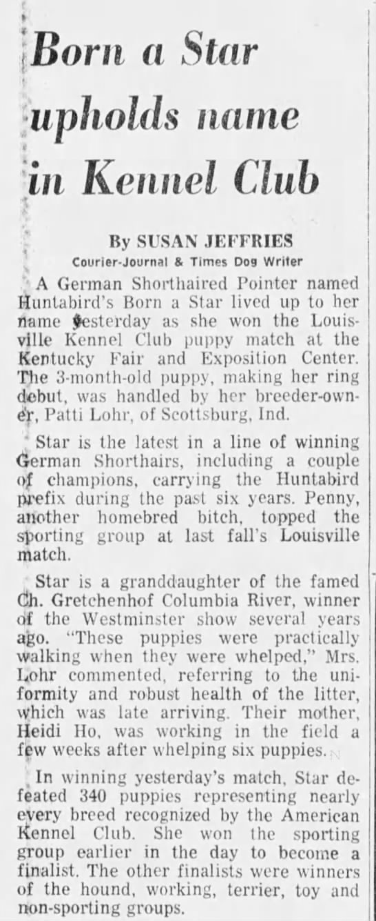 1977-11-07-CJ08-aBornAStarBIM - Born a Star :iipholds name in Kennel Club By...