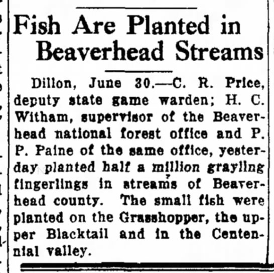 1930 June 30 half a million grayling planted in CV and Beaverhead steams - types other addition force who, L. Fish Are...