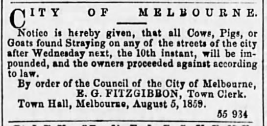 Livestock not allowed in the streets; Australia 1859 - QIT Y OF M otico ia htreby given, tl MELBOURNE....
