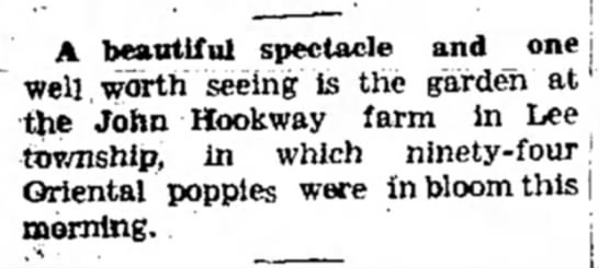 1936 John Hookway garden - A beautiful spectacle and one j well worth...