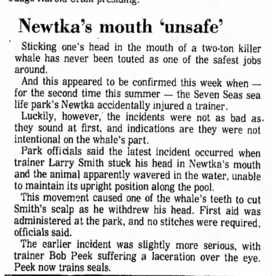 - Newtka's mouth 'unsafe' Sticking one's head in...