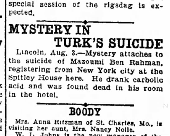 Suicide at Spitley House - Gray took the special session of the rigsdag is...