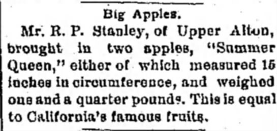 - Big Apples. Mr. R. P. Stanley, of Upper Alton,...