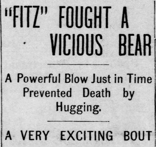 """Fitz"" Fought a Vicious Bear - ""FITZ"" FOUGHT A jjjCW BEAR A Powerful Blow Just..."