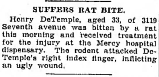 henry detemple rat bite - SUFFERS BAT BITE. Henry DeTemple, aged 33, of...