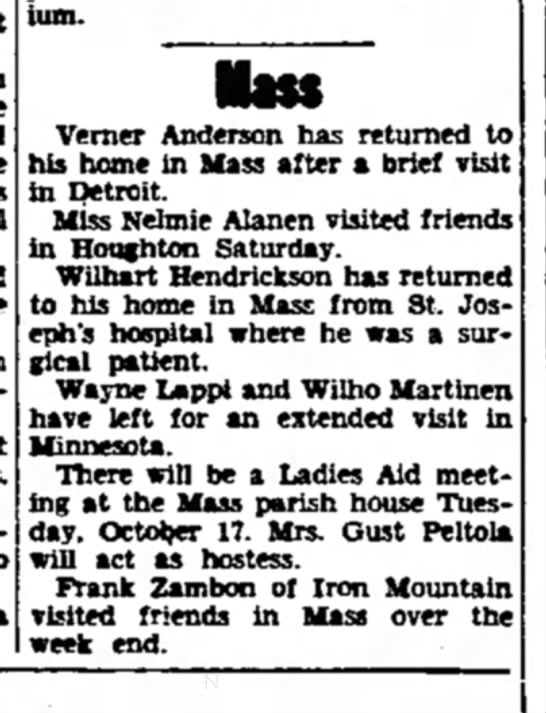Frank Zambon - sanatorium. Verner Anderson has returned to his...