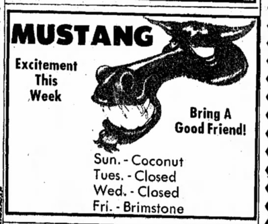 Dover Daily Reporter December 20 1975 - MUSTANG Excitement This Week Bring A Good...