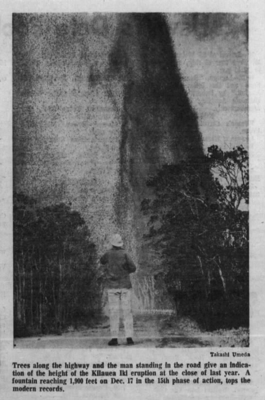 Photo: 1959 Kilauea eruption - 1 if ' i Trees along the highway and the man...
