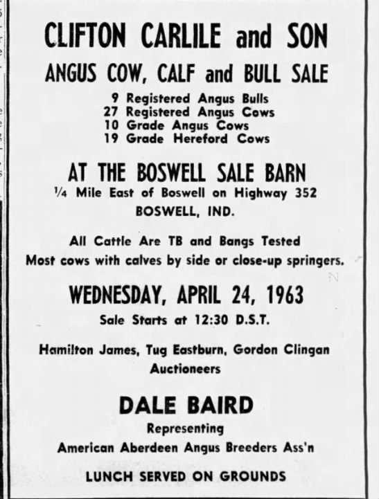 Luth - j i Demo-! CLIFTON CARLILE and SON ANGUS COW,...