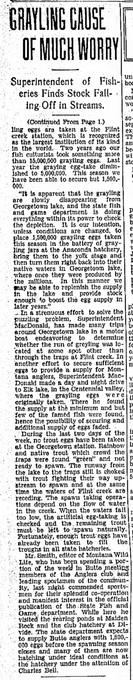 1931 June 14 grayling worry cont. - Superintendent of Fisheries Finds Stock Fall- •...