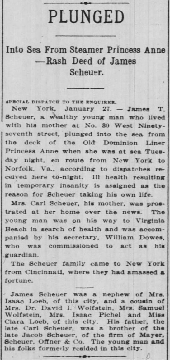 Cincinnati Enquirer 28 Jan 1909 - PLUNGED Into Sea From Steamer Princess Anne...