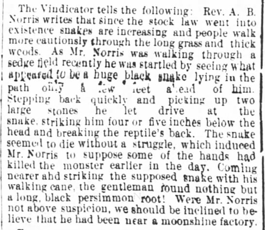 3 Aug 1884 Snake - Tht The Tht The indicator udkator Vindicator...