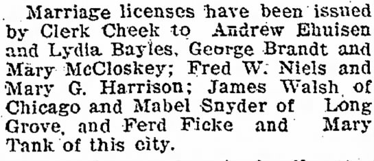 Mary Tank, 27 Nov 1900 Marriage License Ferd Ficke - Marriage licenses have been issued by Clerk...