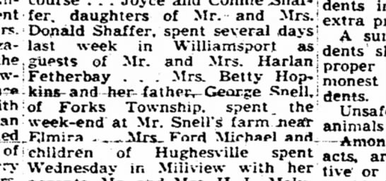 Williamsport Sun