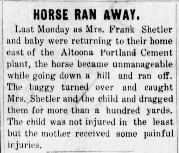 Elnore Shetler and child in buggy accident