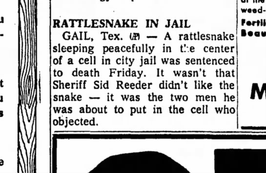 freeport journal standard