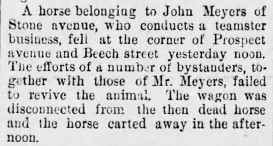 John Meyers of Stone Ave - A horse belonging to John Meyers of Stone...