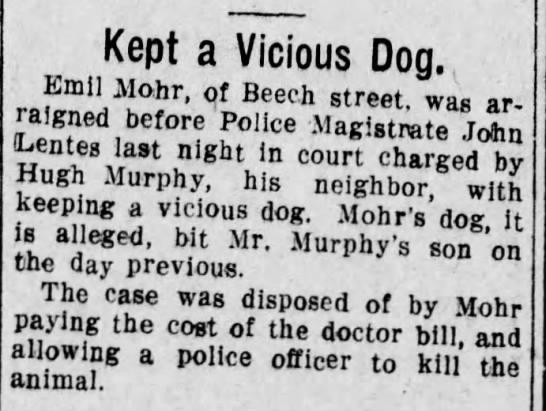 Murphy Dog bite - Kept a Vicious Dog., Emil Mo.hr, of Beech...