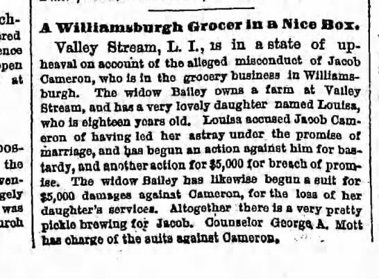 Brooklyn Eagle November 22, 1875 page 4 - open at possession the evening, was A...