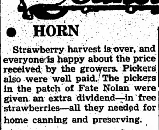 Fate, 15 June 1950 - HORN 'Strawberry harvest ls;over, and...