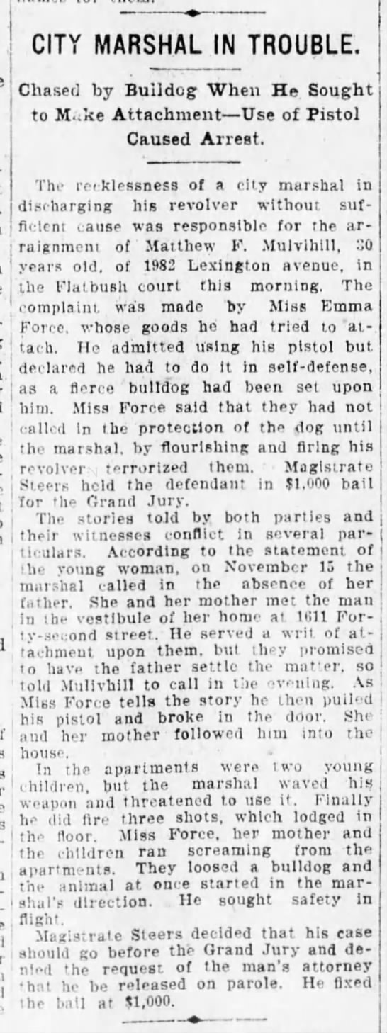 Force, Emma  The Brooklyn Eagle 11 Dec 1907, p18. City Marshal - ;a(,n j.e Emitted using his pistol but t...