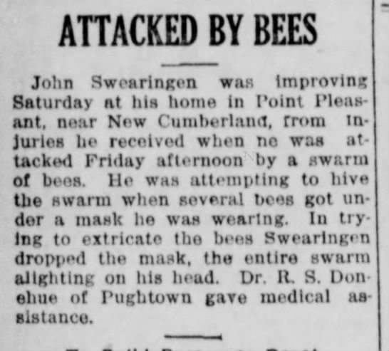 John Swearingen gets attacked by bees - ATTACKED BY BEES John Swearingen was Improving...