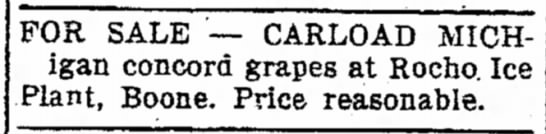 Rocho Ice Plant ad - Michigan grapes for sale Ames Daily Tribune in Ames Iowa 9Oct1931