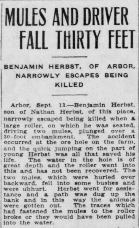 Herbst, Benjamin 1909 article - BENJAMIN HERBST, OF ARBOR, MULES AND DRIVER...