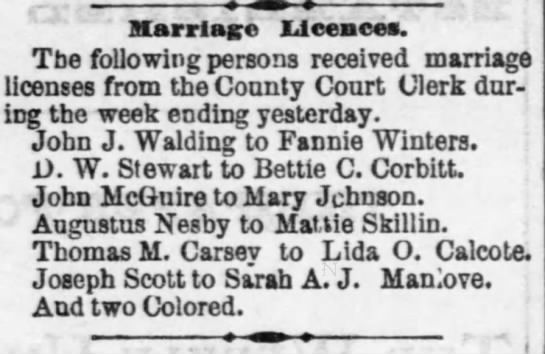 Joseph Scott/Sarah A. J. Manlove - Ilarrlago licences. The following persons...