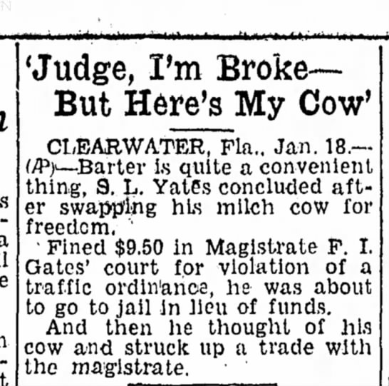cow - 'Judge, I'm Broke— But Here's My Cow'...