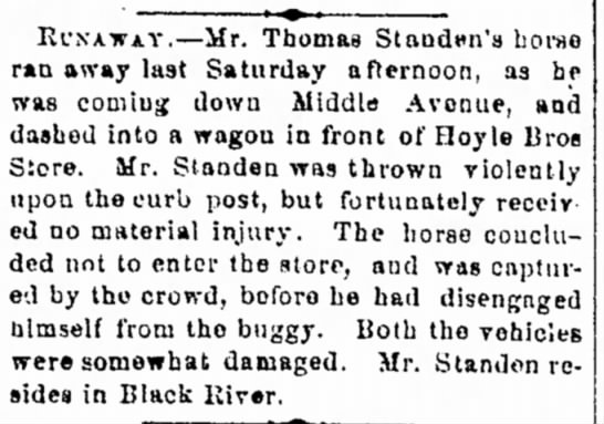 Standen, Thomas 1874 Black River, runaway horse - made a crime by law. ?????????????????? i o...