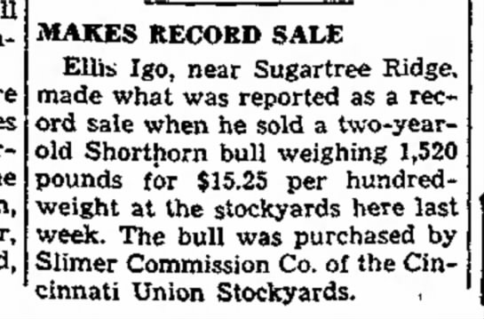 Record bull purchase - will invited Jane Smith, MAKES RECORD SALE...