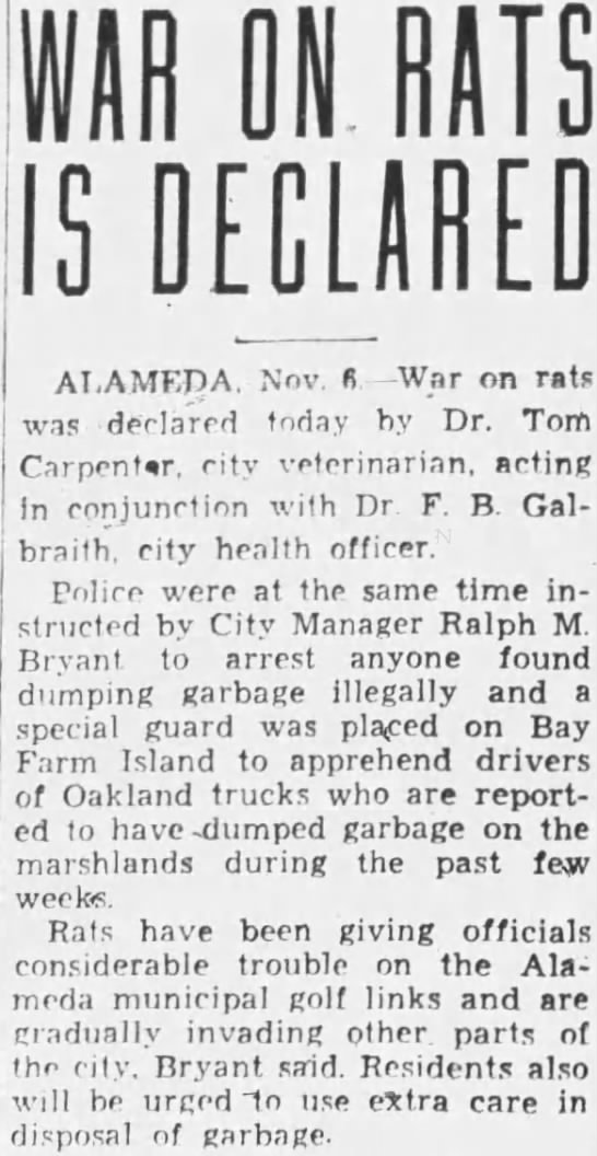 1933-11-06 Alameda dump rats invade golf course and town -