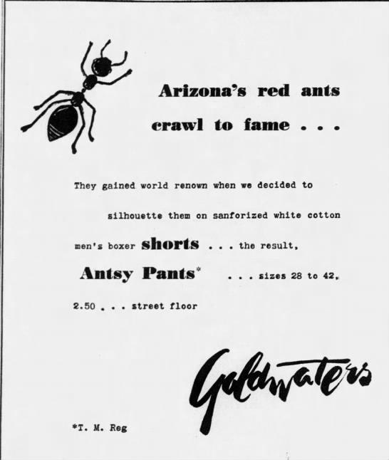 Antsy pants Goldwaters fashion -