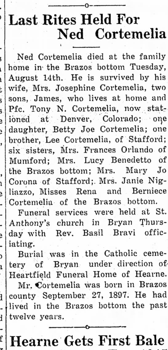 Mrs. Francis Orlando -