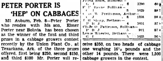 Cabbage Contest -
