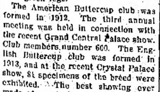 American Buttercup Club 1912, 600 members in 1914; English Buttercup Club 1913 -