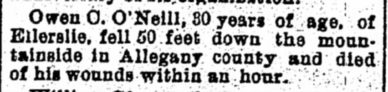 19020904 oniel fall -