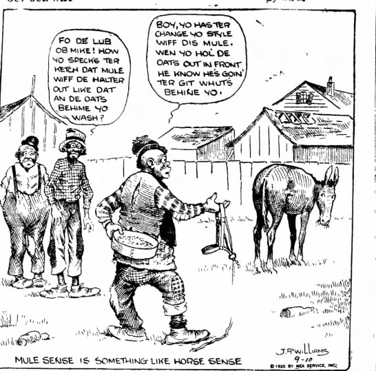 Negro cartoon 1925 in Indiana Evening Gazette - j FO / 08 MIKE· HOW VQ SPECKfe TfeR OAT MULE....