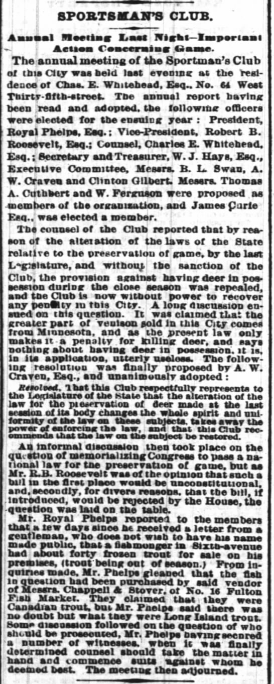 Hays_nyTimes_14jan1873_p8 -