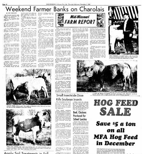 Jefferson-City Post Tribune 1 Dec 1966 Charolais -