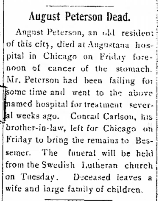 August Peterson dead (The Bessemer Herald, 29 July 1905, page 5) -