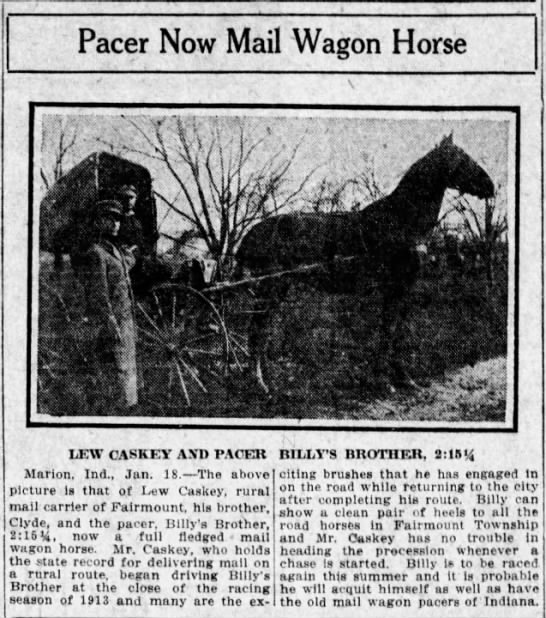 Mail Wagon Horse -