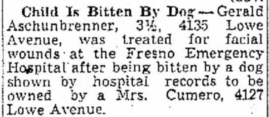 grandma cumero's dog bites child 1944 - survivors provisions protected, Child Is Bitten...