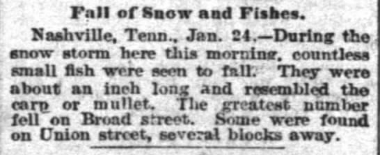 1890 Fall of Snow and Fishes in Nashville, TN - TMalmay -