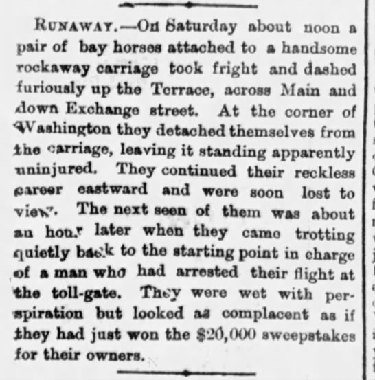 Runaway horses attached to rockaway carriage take off -