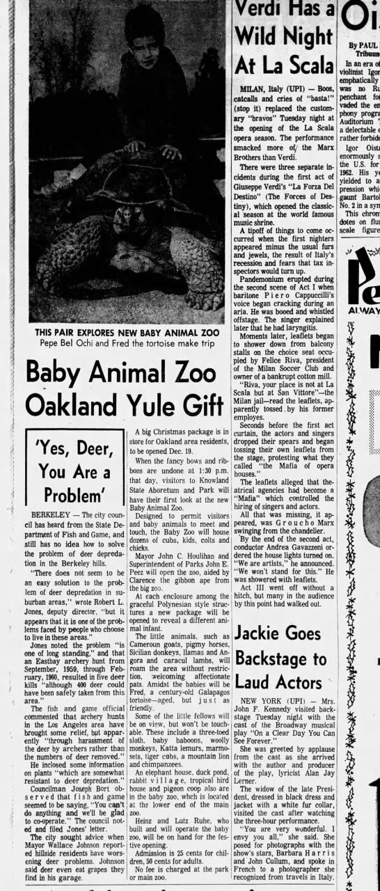 Baby Animal Zoo - Oakland Tribune December 08 1965 -