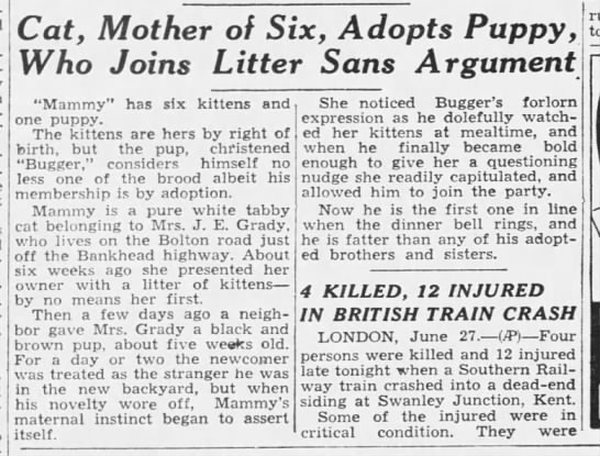 1937: Cat adopts a puppy -